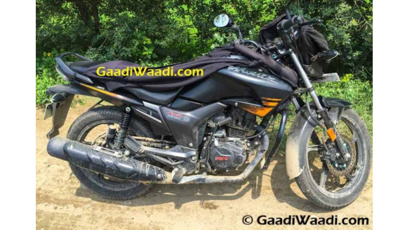 Hero Hunk facelift spotted undisguised during test