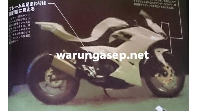 2016 Kawasaki Ninja 250R image surfaces