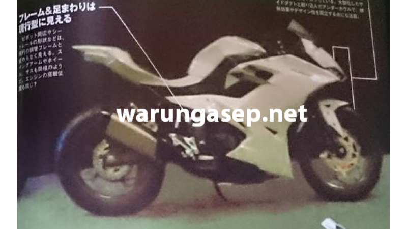 2016 Kawasaki Ninja 250R image surfaces